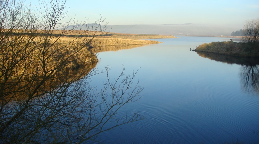 Colne Waters